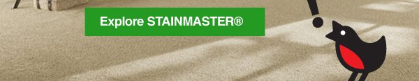 Explore STAINMASTER®
