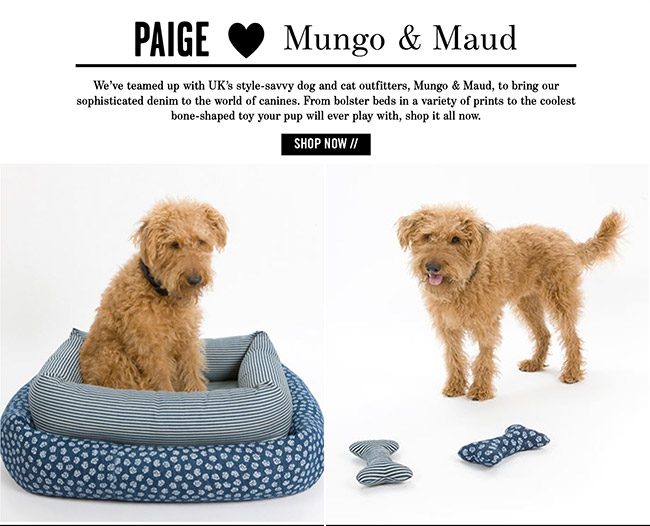 Shop Our Canine-Approved Collaboration