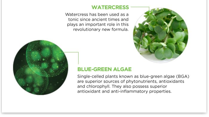 GOING GREEN: The Science behind Chloro Plasma
