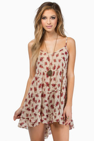 Rose Fields Dress $40