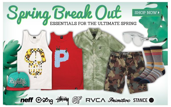 Essentials for the Ultimate Spring