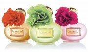 COACH Love Fragrances | Shop Now