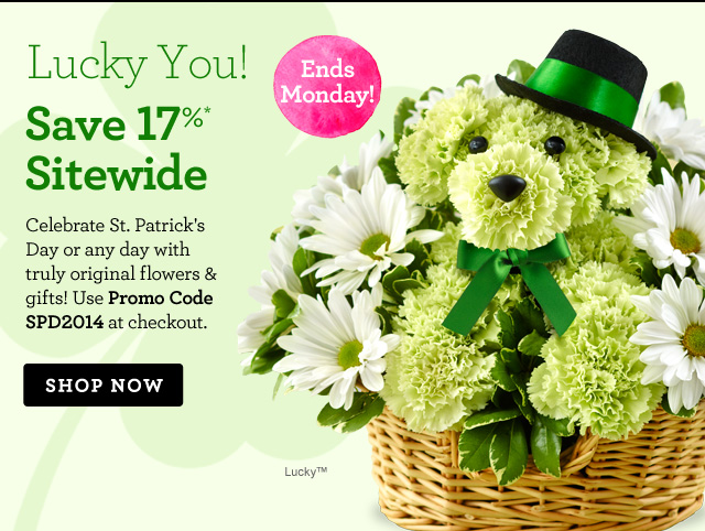 Lucky You! Save 17%* Sitewide  Celebrate St. Patrick's Day or any day with truly original flowers & gifts! Use Promo Code SPD2014 at checkout.  Ends Monday!  Shop Now
