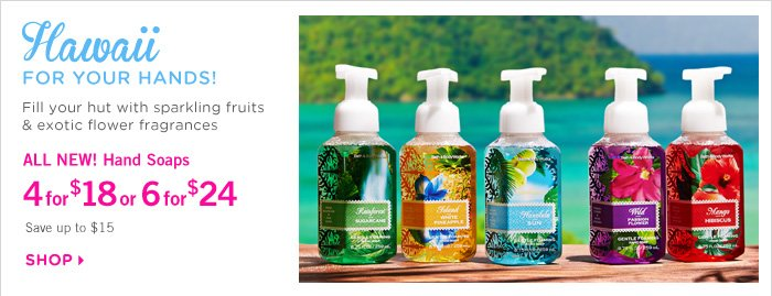 Hand Soap – 4 for $18