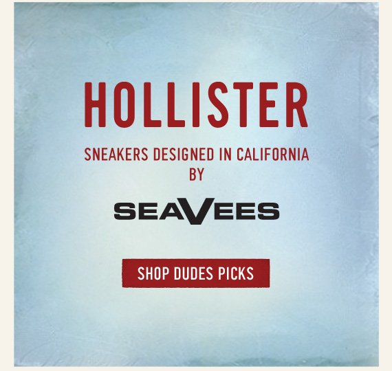 HOLLISTER SNEAKERS DESIGNED IN CALIFORNIA BY SEAVEES SHOP DUDES  PICKS