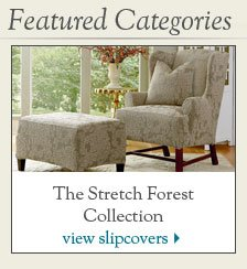 Stretch Forest
