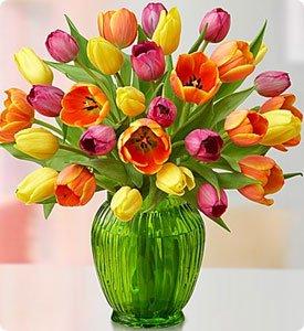 Assorted Tulips Shop Now