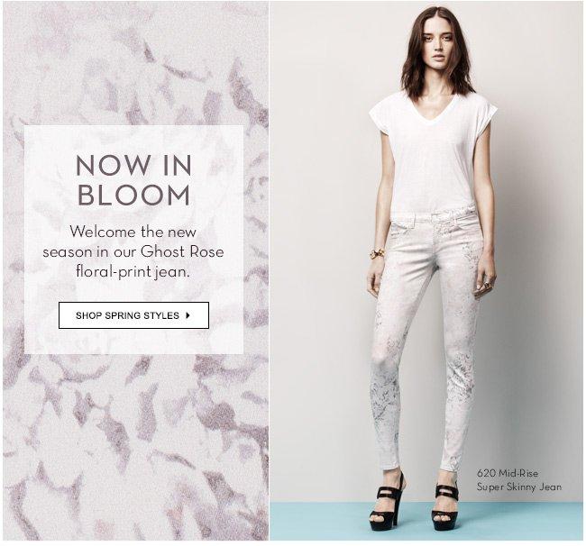 Now in bloom | Shop Florals