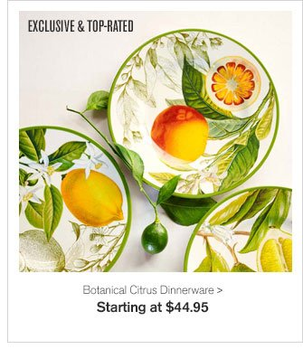 EXCLUSIVE & TOP-RATED - Botanical Citrus Dinnerware - Starting at $44.95