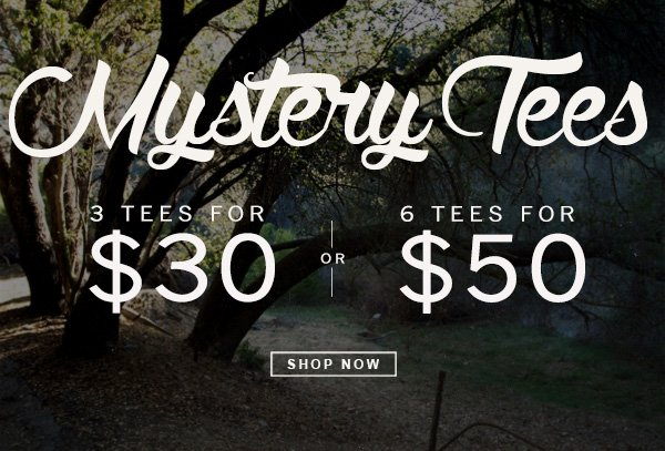 Mystery Tess. 3 for $30 and 6 for $50. At Junk Food Clothing Co.