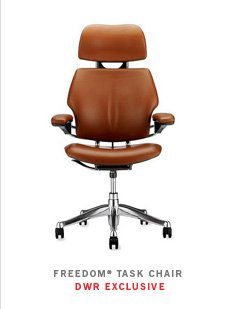 FREEDOM TASK CHAIR DWR EXCLUSIVE