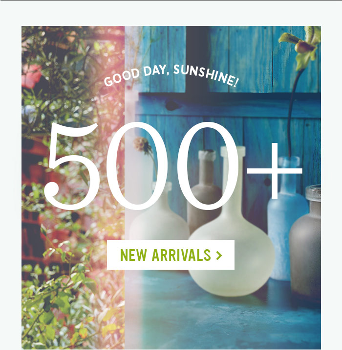 Good Day, Sunshine! 500+ New Arrivals
