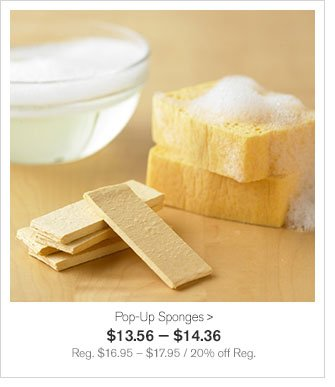Pop-Up Sponges - $13.56 — $14.36 - Reg. $16.95 – $17.95 / 20% off Reg.
