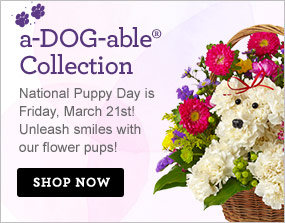a-DOG-able® Collection National Puppy Day is Friday, March 21st! Unleash smiles with our fresh collection of flower pups! Shop Now