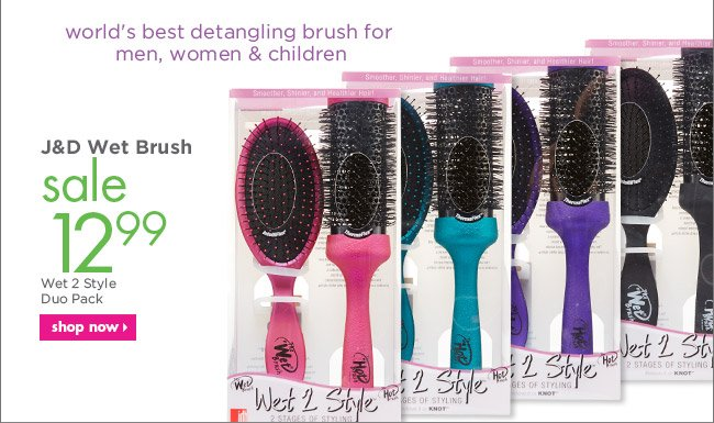 J&D Wet Brush