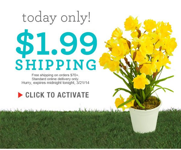 Today only $1.99 standard shipping
