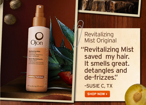 Revitalizing Mist Original Revitalizing Mist saved my hair It smells great detangles and de frizzes SUSIE C TX SHOP NOW