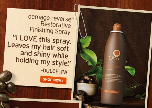 damage reverse Restorative Finishing Spray I LOVE this spray Leaves my hair soft and shiny while holding my style DULCE PA SHOP NOW
