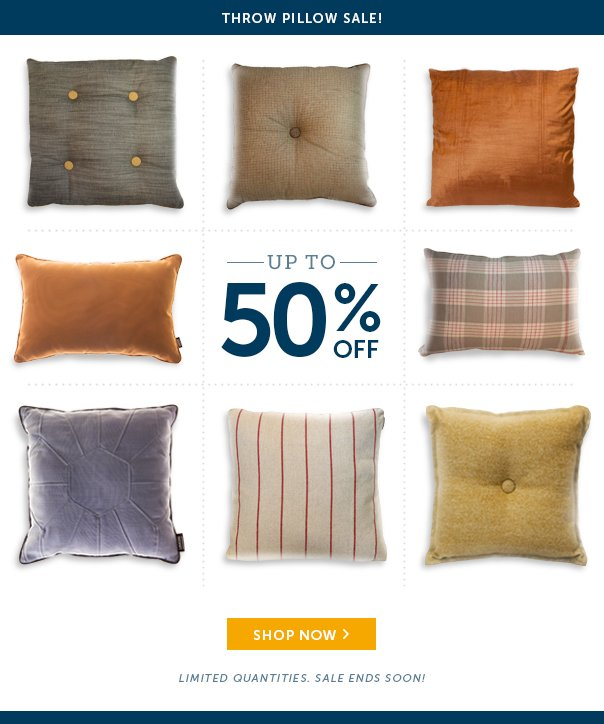 Throw Pillow Sale - Up to 50% Off!