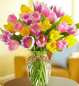 Timeless Tulips®  Same-Day Local Florist Delivery Shop Now
