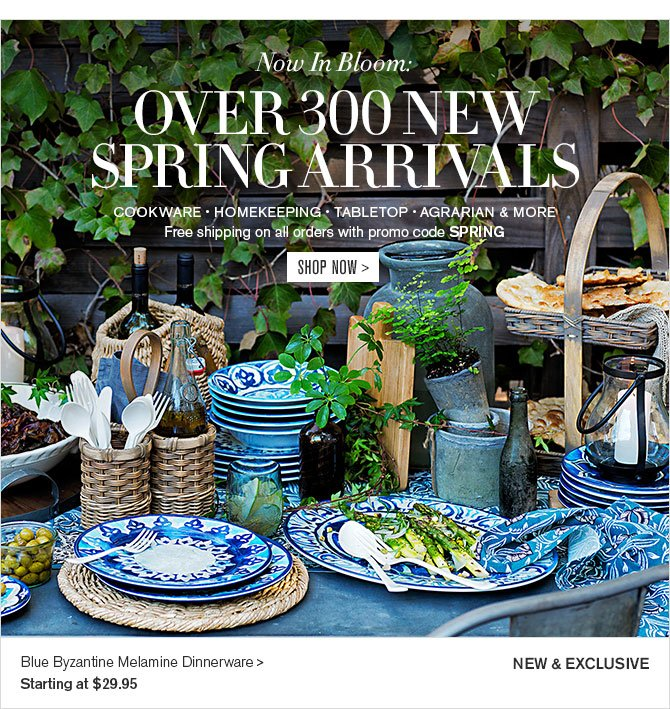 Now In Bloom: OVER 300 NEW SPRING ARRIVALS - COOKWARE • HOMEKEEPING • TABLETOP • AGRARIAN & MORE - Free shipping on all orders with promo code SPRING - SHOP NOW - NEW & EXCLUSIVE - Blue Byzantine Melamine Dinnerware - Starting at $29.95