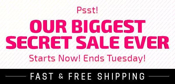 Secret Sale Teaser