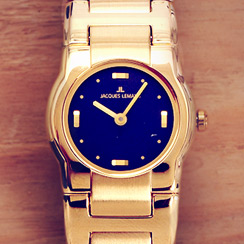 The Stainless Steel Watch