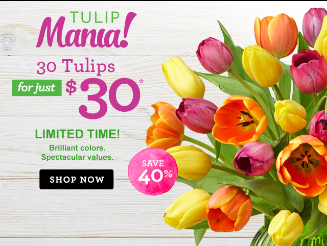 Tulip Mania! Brilliant Colors. Spectacular Values. Send 30 Tulips for $30*  Save 40%!  Shop Now