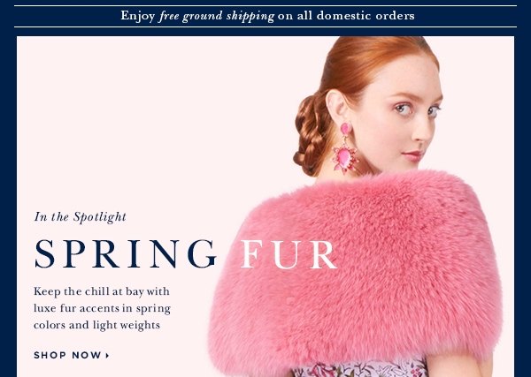 In the Spotlight SPRING FUR
