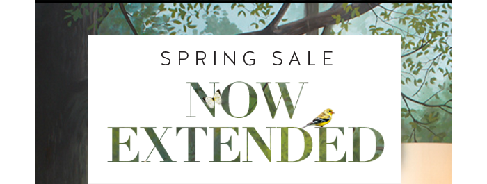 Spring Sale Now Extended