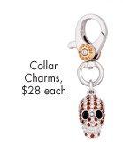 Skull Dog Collar Charm