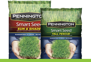 Bags of Pennington Smart Seed Grass Seed.