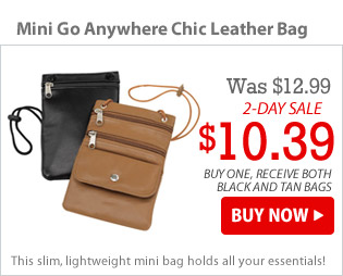 Mini Go Anywhere Chic Leather Bag
