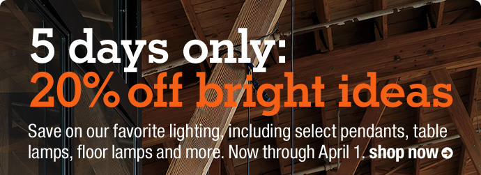 5 days only:  20% off bright ideas