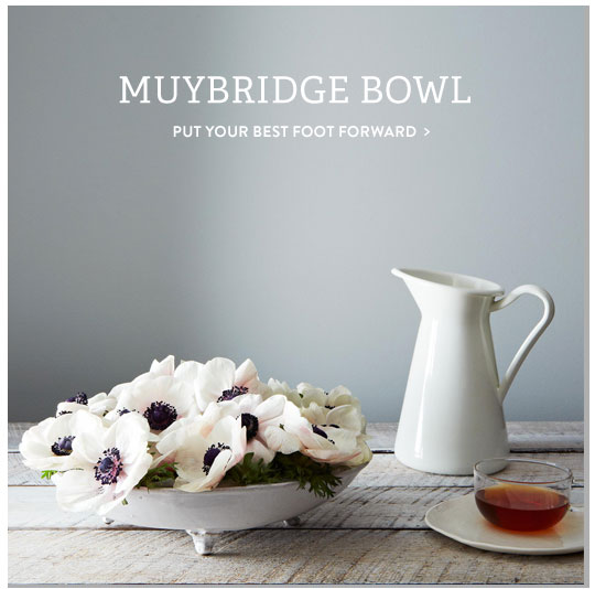 Muybridge Bowl