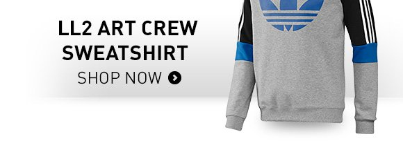 Shop the LL2 Art Crew Sweatshirt »