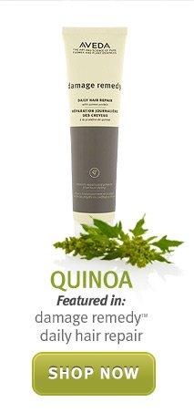 quinoa. shop now.