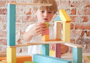 The Little Builder: Wooden Blocks