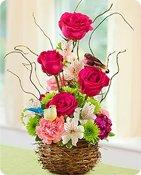 Springtime Bird's Nest of Flowers Shop Now