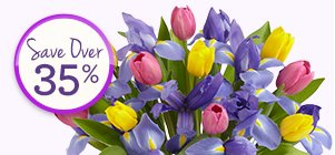 Deal of the Week Tulip and Iris Bouquet + Free Premium Vase,  just $29.99** While Supplies Last! Shop Now >