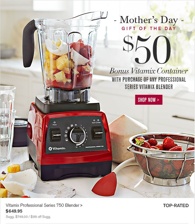 day gift of the day 50 bonus vitamix container with purchase of any - Vitamix 750