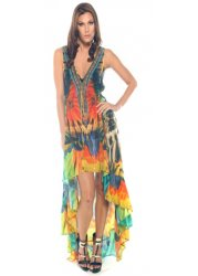 Amazonia Macaw Print Silk Crepe Hi Low Dress