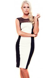 Eliza Monochrome Pencil Dress With Spot Mesh Neckline