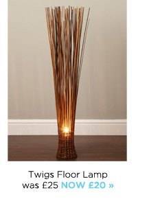 Awesome Twig Floor Lamps Pictures - Flooring & Area Rugs Home .
