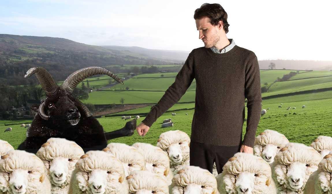 Betabrand: Fleeting Fleece! | Milled