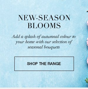 New-season blooms : Add a splash of autumnal colour to your home with our selection of seasonal bouquets