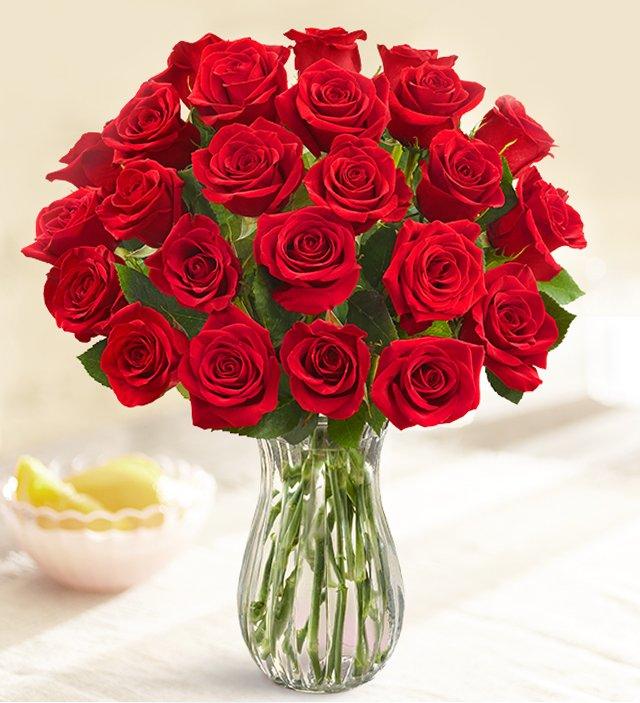 Flowers don t miss off dozen red roses