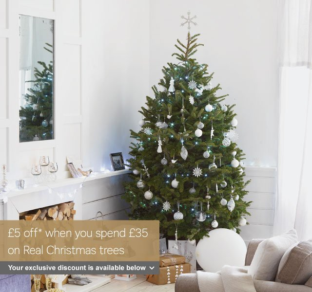 Homebase: Your Exclusive Offer On Real Christmas Trees