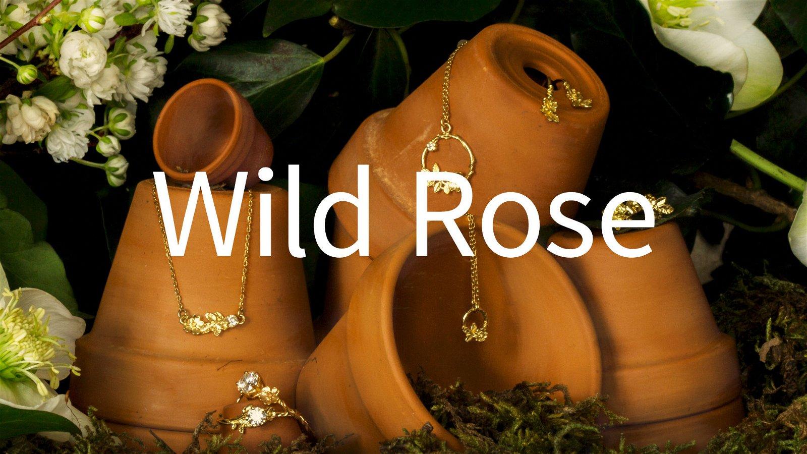 Смотреть онлайн rose monroe 24 фотография