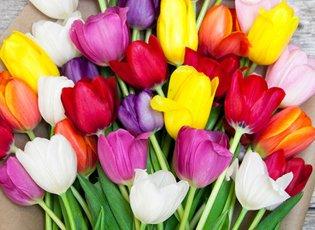 Gilt city este lauder exhale mind body spa last minute flowers the bouqs company malvernweather Choice Image